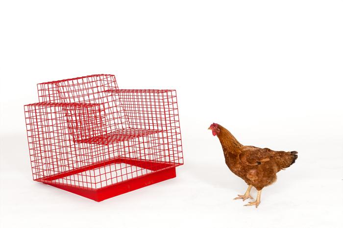 img-algebra-chair-003